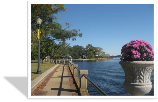 New Bern Waterfront & Pink Mums
