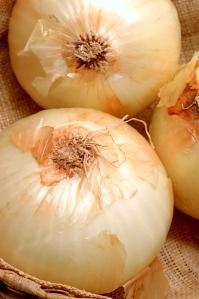 vidalia onions 2